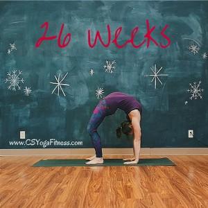 26 Weeks Wheel